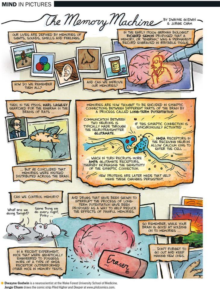 mindinpictures(1)