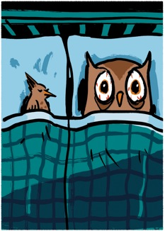 owl-lark