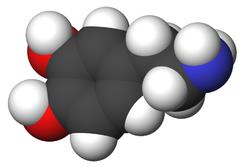 Dopamine-3d-CPK