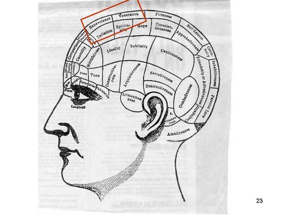 Puntos Frenológicos del Cerebro de Gage