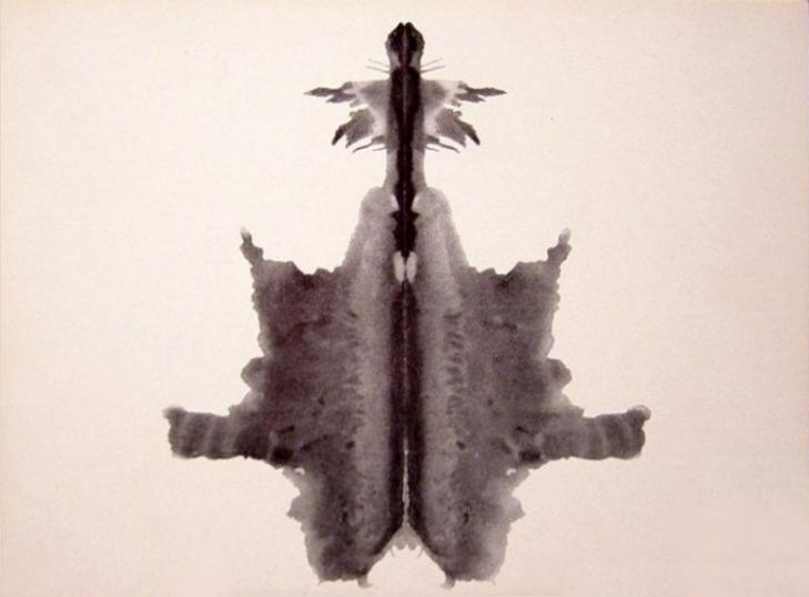 Lámina 6: Animal Oculto, Piel, Alfombra