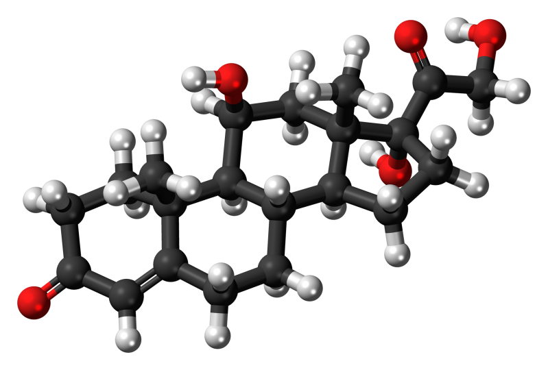 El Cortisol, la hormona del Stress.