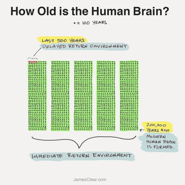 ¿Cuál es la edad del cerebro humano? En esta imagen podemos ver, cómo el cerebro humano se ha pasado la inmensa mayor parte de su existencia en un entorno de retorno inmediato.