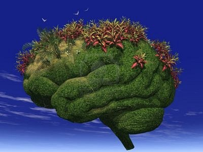 629444-3d-render-of-a-brain-looking-garden6