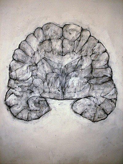 """Tejido Nervioso 2"" (Nervous Tissue 2) de David Marron, dibujo."