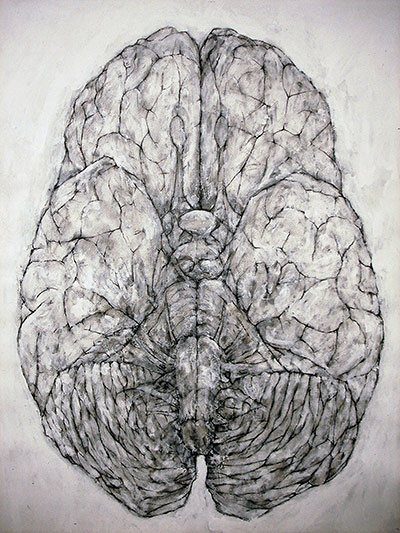 """Tejido Nervioso 3"" (Nervous Tissue 3) de David Marron, dibujo."