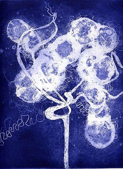 """""""Paisaje Cerebral 17"""" (Brainscape 17) de susan Aldworth. Grabado y Acuarela."""