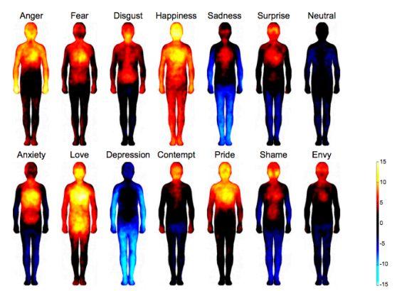 Mapa de Calor de nuestro cuerpo en varias emociones. El Enfado, el primero de la fila de arriba.
