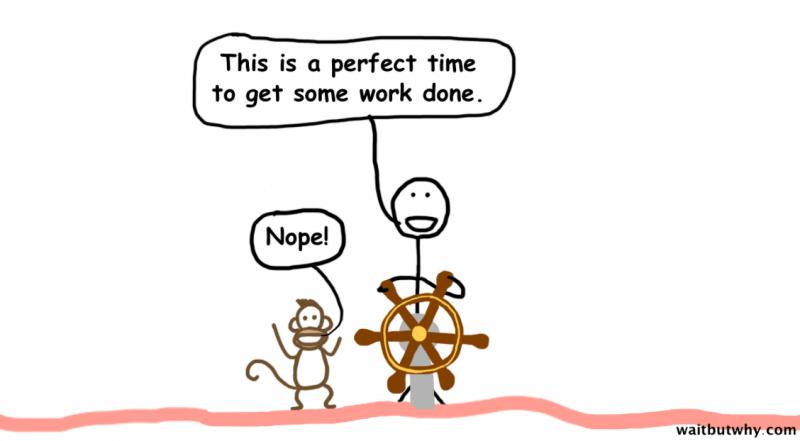 """Timonel: """"Este es el momento idóneo para hacer trabajo"""" Mono: """"No!!"""""""