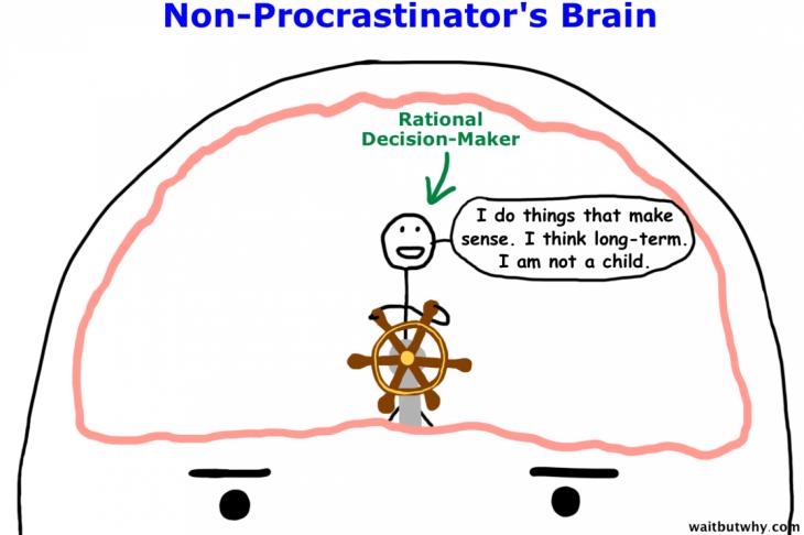 El Cerebro de Un NO Procrastinador