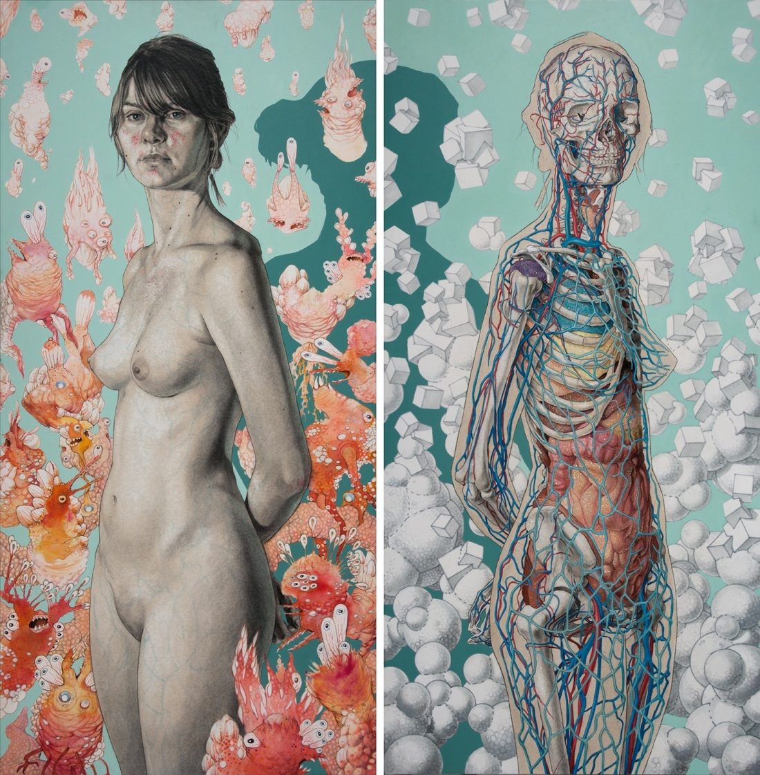 El Fascinante Arte de la Anatomía Humana | Feel the Brain