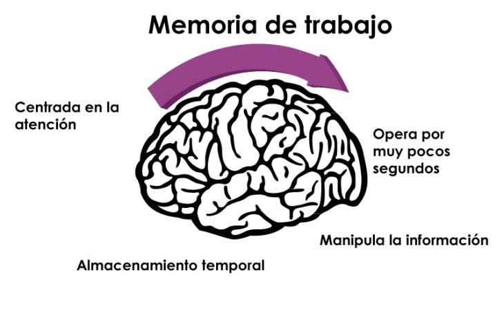 Características de la Memoria de Trabajo
