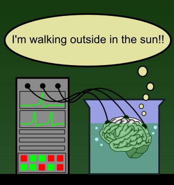 """Brain in a vat. Expresión de """"Cerebro en una jarra"""". Aquí el cerebro afirma que ha estado caminando bajo el Sol."""