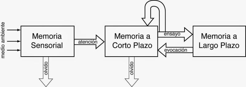 Modelo del Procesado de la Información (PI)