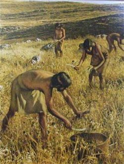 L@s Primer@s agricultor@s
