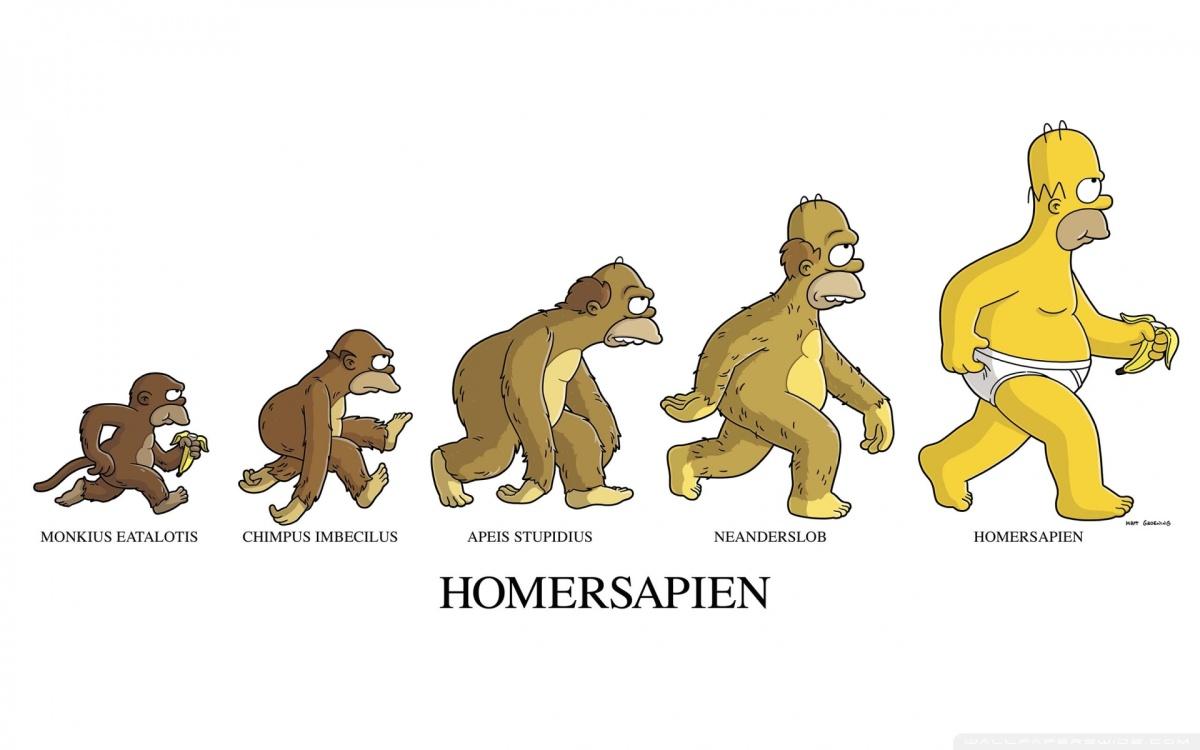 La Epigenética o cómo el comportamiento y el entorno afectan a la evolución