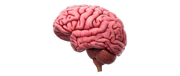 Altos niveles de conocimiento de un tema dobla las posibilidades de tener falsos recuerdos.