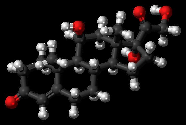 El Cortisol, la hormona del Stress