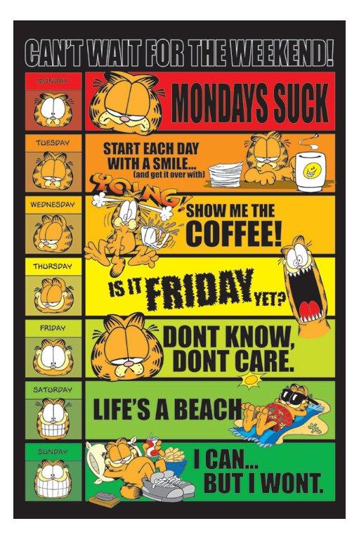 La Semana de Garfield