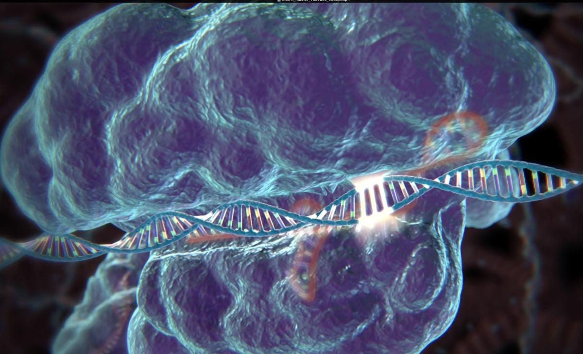 Todo Lo Que Necesitas Saber De CRISPR