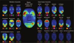 Imagen del Estudio Que Revela las 4 Expresiones Faciales Culturalmente Más Comunes