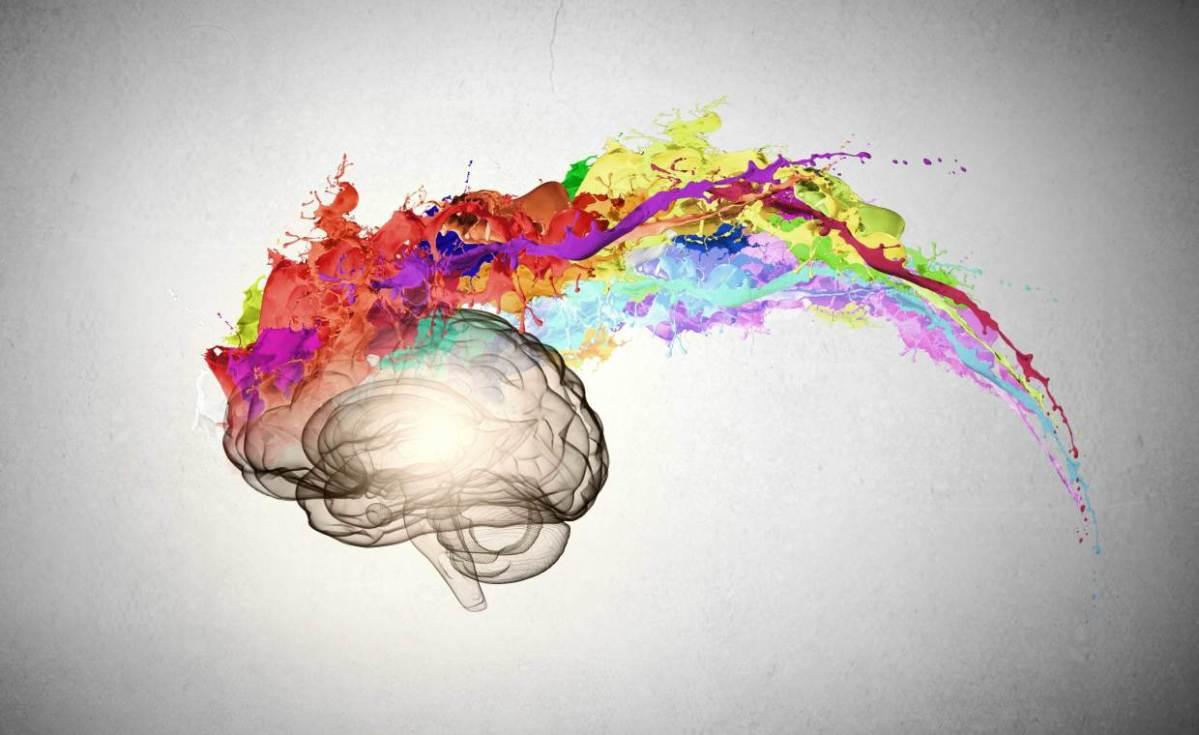 Cómo Tu Cerebro Decide Qué Es Bello