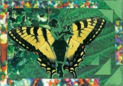 hannahbutterfly-1024x718