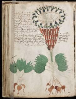 manuscrito078