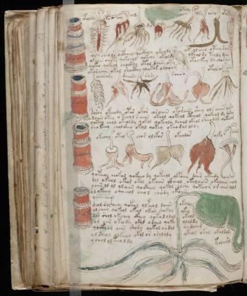 manuscrito174
