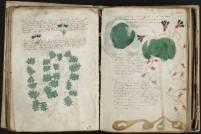 manuscrito208