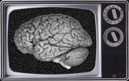 Cerebro y Tele