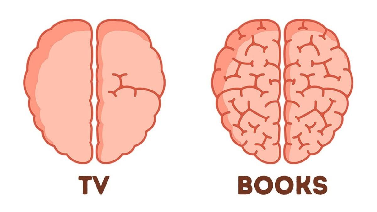 Brain, Books, TV